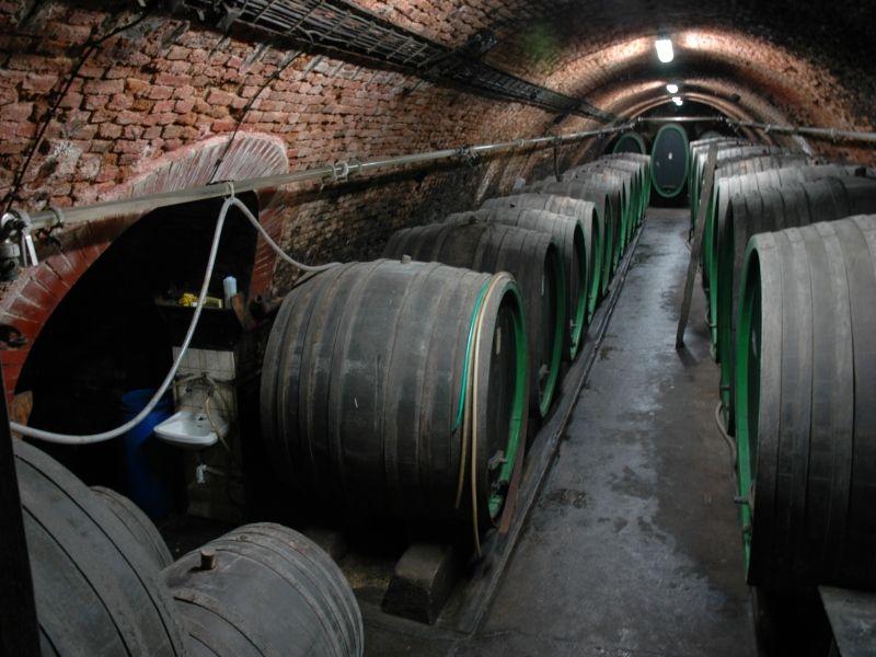 Návštěva vinaře a vinařství