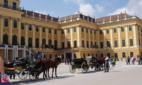 Královská sklepení - Vídeň